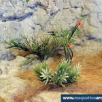 habitat rocheux diorama