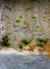 Diorama d'habitat rocheux